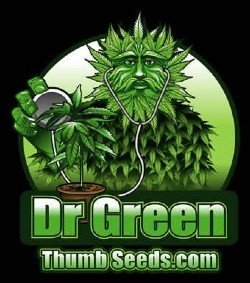 Dr. Green Thumb Seeds