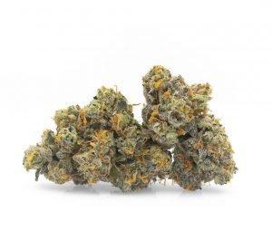 ak 47 weed strain