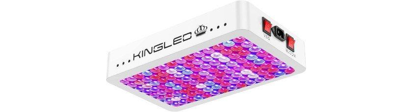 KingLED Newest 1200w LED Grow Lights