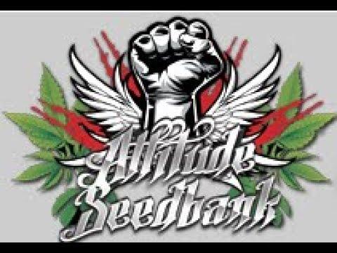 attitude seed bank logo