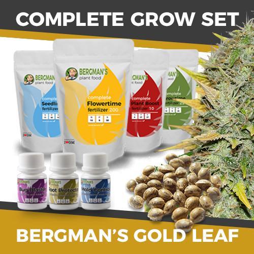 complete-grow-set-goldleaf