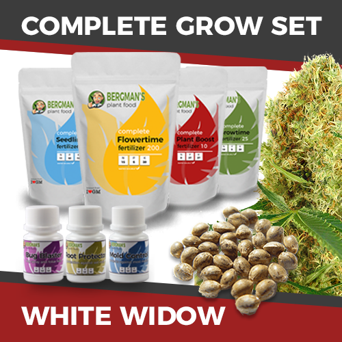 complete-grow-set-whitewidow