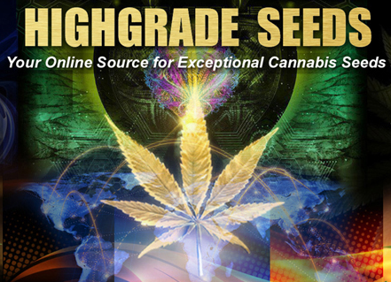 highgrade seeds logo