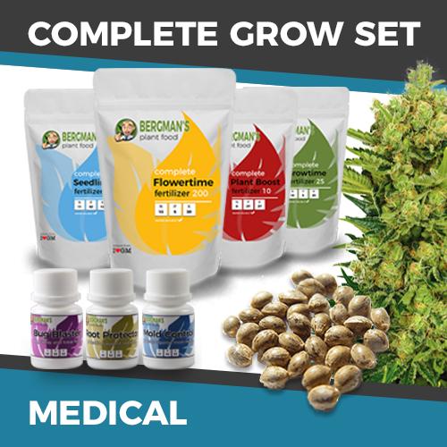 medicinal marijuana growing